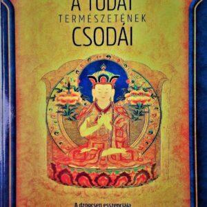 Tenzin Wangyal Rinpocse A Tudat természetének csodái