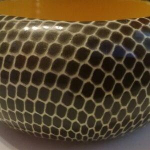 Fekete fehér kígyó s10022